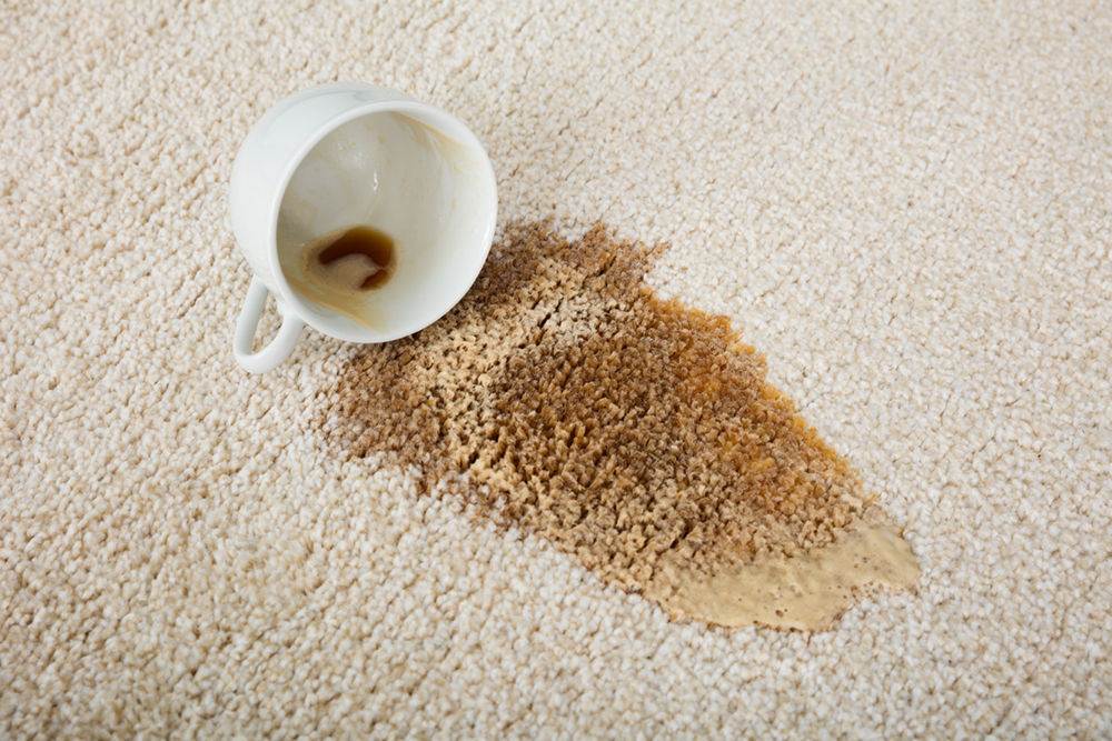 coffee-stained-carpet